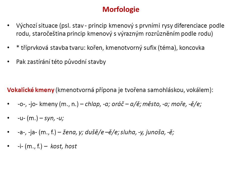 Morfologie Konsonantické kmeny (kmenotvorná přípona je tvořena souhláskou, obvykle kombinací se samohláskou), v období staročeském postupný zánik, splynutí s vokalickými kmeny: -n- (m., n.) – jmě, -ene; -nt- (n.) – kuře, -ete; -r- (f.) mati,-ere; dci/dcera, - eře – dcery; -s- (n.) – slovo, slovese; -v- (f.)– mrkěv, břěskěv; -6jo- kmen (vznikne pračeskou kontrakcí): znamenie > znamen6je, dnes stavení.