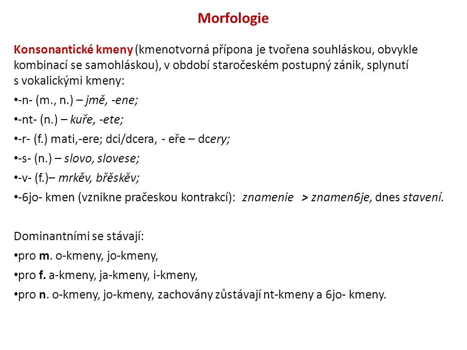 Morfologie Konsonantické kmeny (kmenotvorná přípona je tvořena souhláskou, obvykle kombinací se samohláskou), v období staročeském postupný zánik, spl