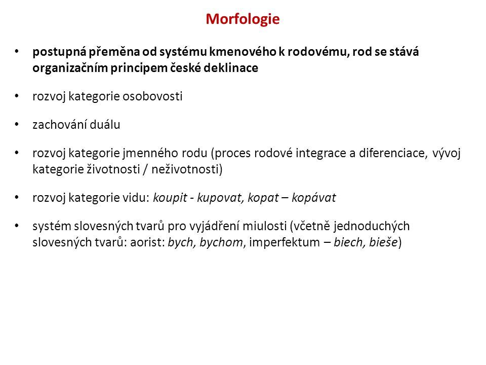 Morfologie postupná přeměna od systému kmenového k rodovému, rod se stává organizačním principem české deklinace rozvoj kategorie osobovosti zachování