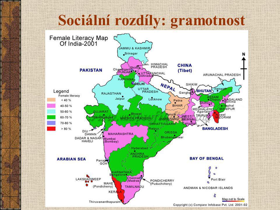 Sociální rozdíly: gramotnost