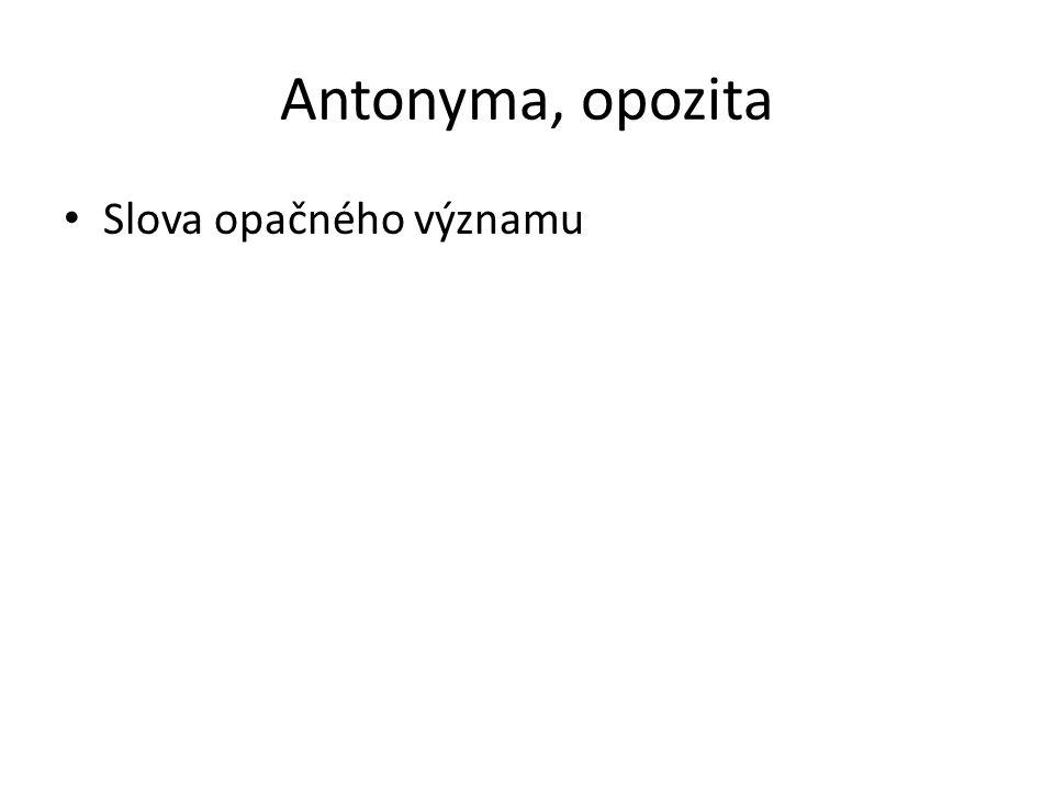 Antonyma, opozita Slova opačného významu