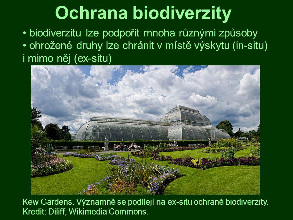 Ochrana biodiverzity biodiverzitu lze podpořit mnoha různými způsoby ohrožené druhy lze chránit v místě výskytu (in-situ) i mimo něj (ex-situ) Kew Gar