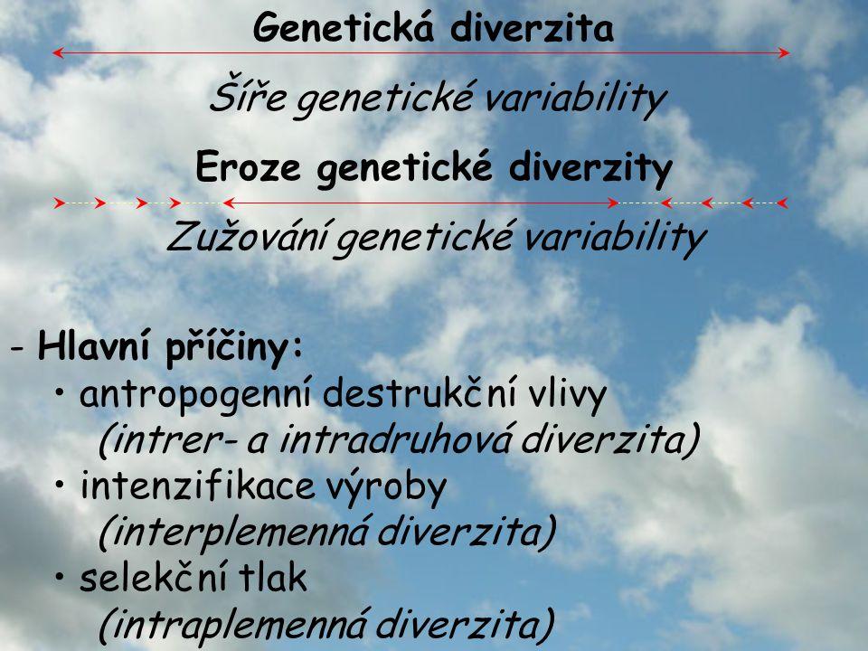 - Hlavní příčiny: antropogenní destrukční vlivy (intrer- a intradruhová diverzita) intenzifikace výroby (interplemenná diverzita) selekční tlak (intraplemenná diverzita) Genetická diverzita Šíře genetické variability Eroze genetické diverzity Zužování genetické variability