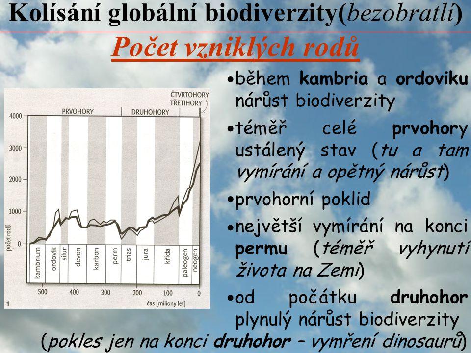 Kolísání globální biodiverzity(bezobratlí) během kambria a ordoviku nárůst biodiverzity téměř celé prvohory ustálený stav (tu a tam vymírání a opětný nárůst) prvohorní poklid největší vymírání na konci permu (téměř vyhynutí života na Zemi) od počátku druhohor plynulý nárůst biodiverzity Počet vzniklých rodů (pokles jen na konci druhohor – vymření dinosaurů)