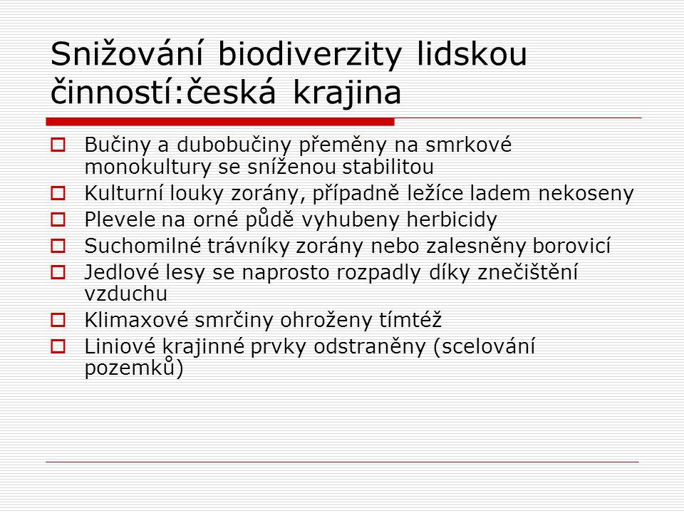Snižování biodiverzity lidskou činností:česká krajina  Bučiny a dubobučiny přeměny na smrkové monokultury se sníženou stabilitou  Kulturní louky zor