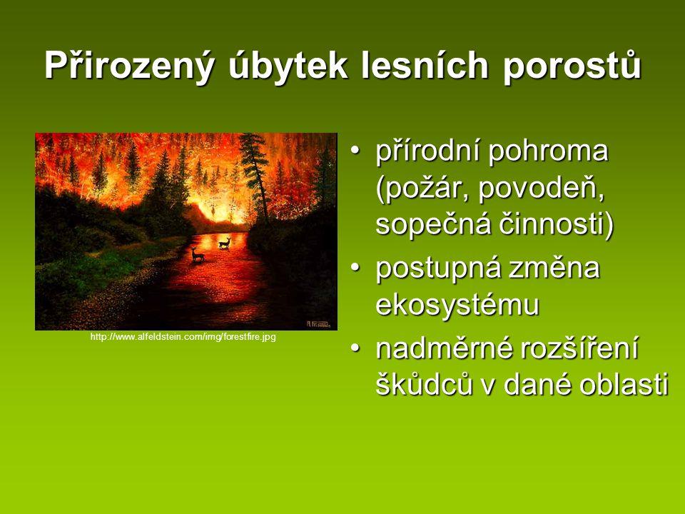 Přirozený úbytek lesních porostů přírodní pohroma (požár, povodeň, sopečná činnosti)přírodní pohroma (požár, povodeň, sopečná činnosti) postupná změna