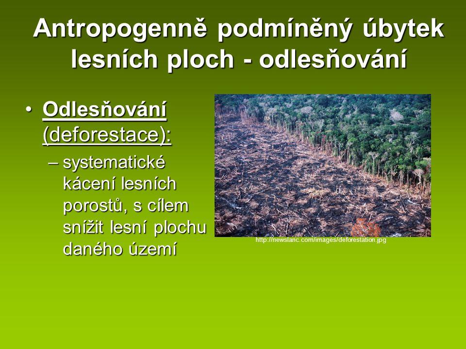 Antropogenně podmíněný úbytek lesních ploch - odlesňování Odlesňování (deforestace):Odlesňování (deforestace): –systematické kácení lesních porostů, s