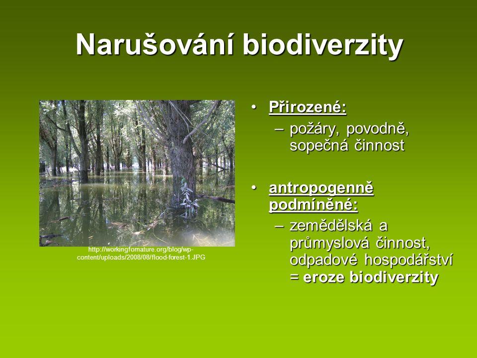 Narušování biodiverzity Přirozené:Přirozené: –požáry, povodně, sopečná činnost antropogenně podmíněné:antropogenně podmíněné: –zemědělská a průmyslová
