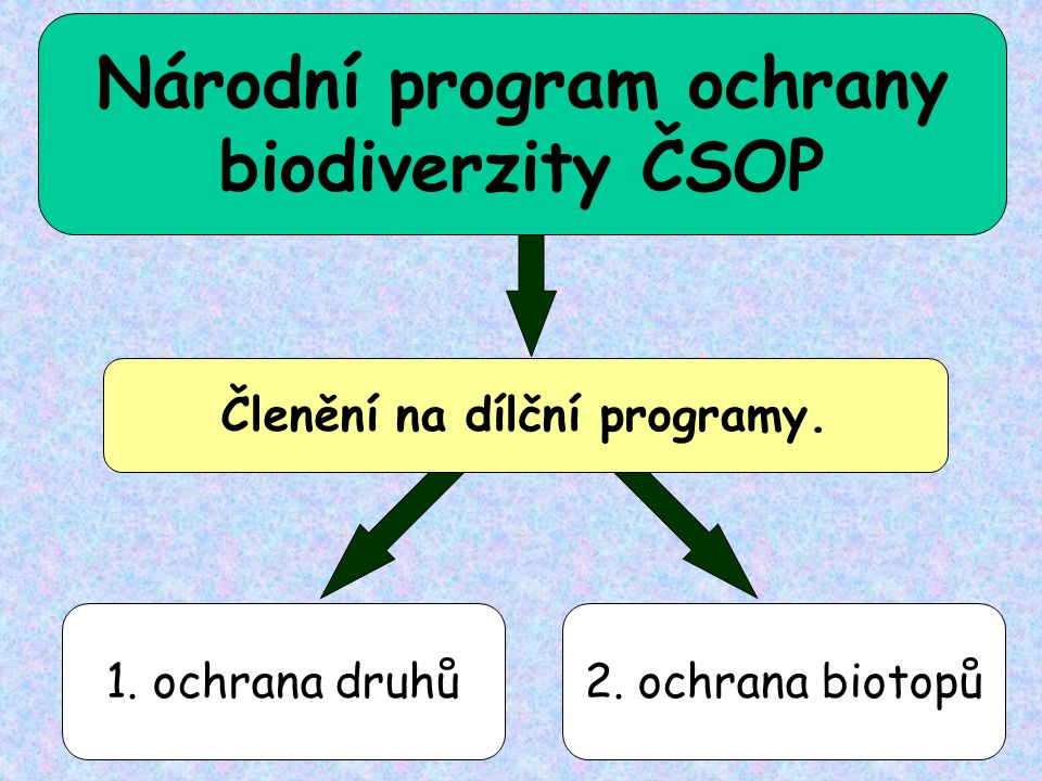 1. ochrana druhů2. ochrana biotopů Národní program ochrany biodiverzity ČSOP Členění na dílční programy.