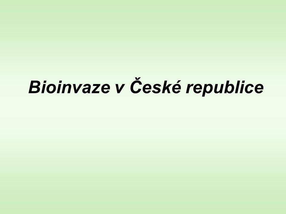 Bioinvaze v České republice