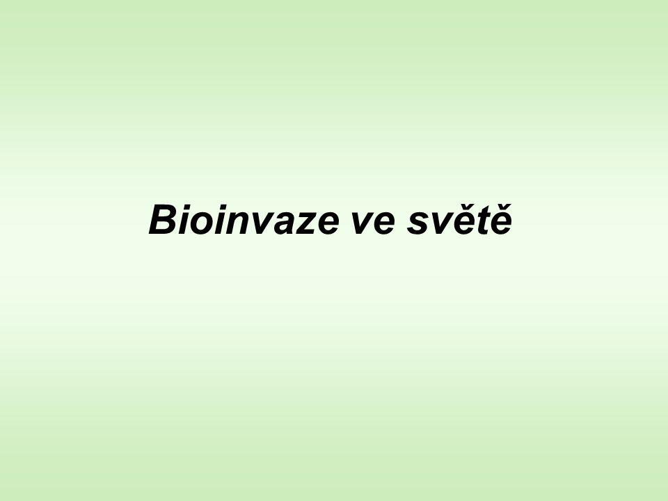 Bioinvaze ve světě
