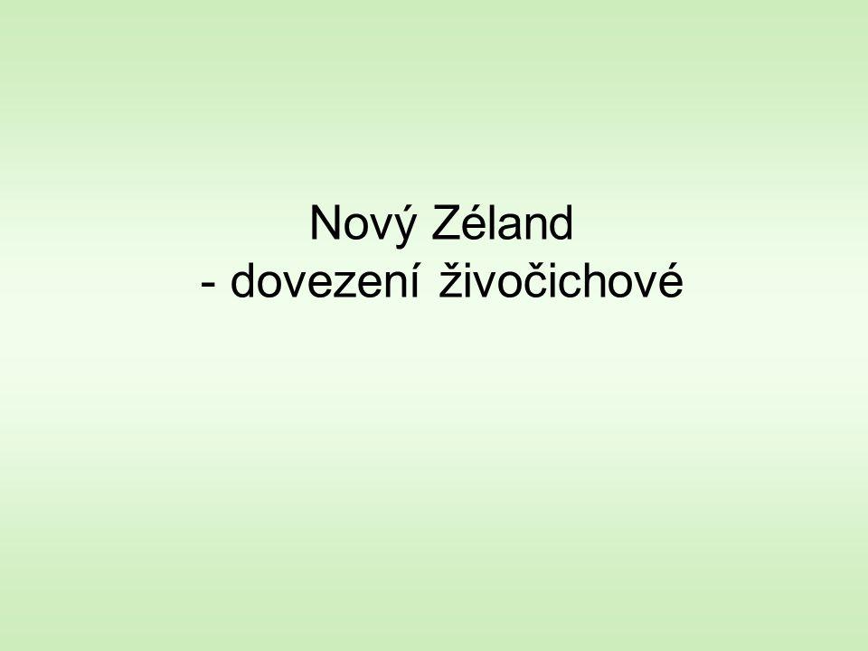 Nový Zéland - dovezení živočichové