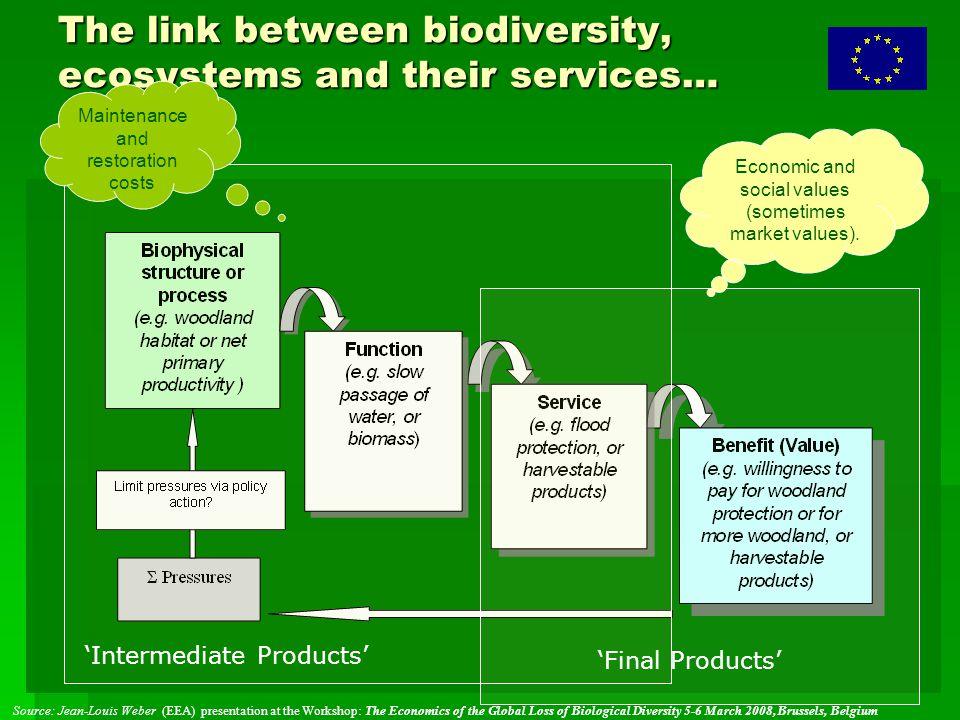 """První kroky  """"umožňující proces : mobilizace zdrojů a myšlenek (brainstorming)  start přípravných prací  Zadání nových analytických studií  Otevřená výzva na webu k poskytnutí podkladů  mobilizace partnerů  mnoho organizací nabídlo spolupráci, včetně ministerstev Velké Británie, Francie, Conservation International etc."""