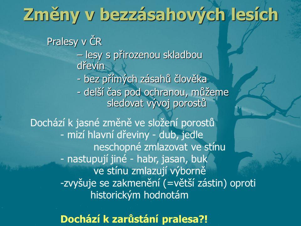 Změny v bezzásahových lesích Pralesy v ČR – lesy s přirozenou skladbou dřevin - bez přímých zásahů člověka - delší čas pod ochranou, můžeme sledovat v