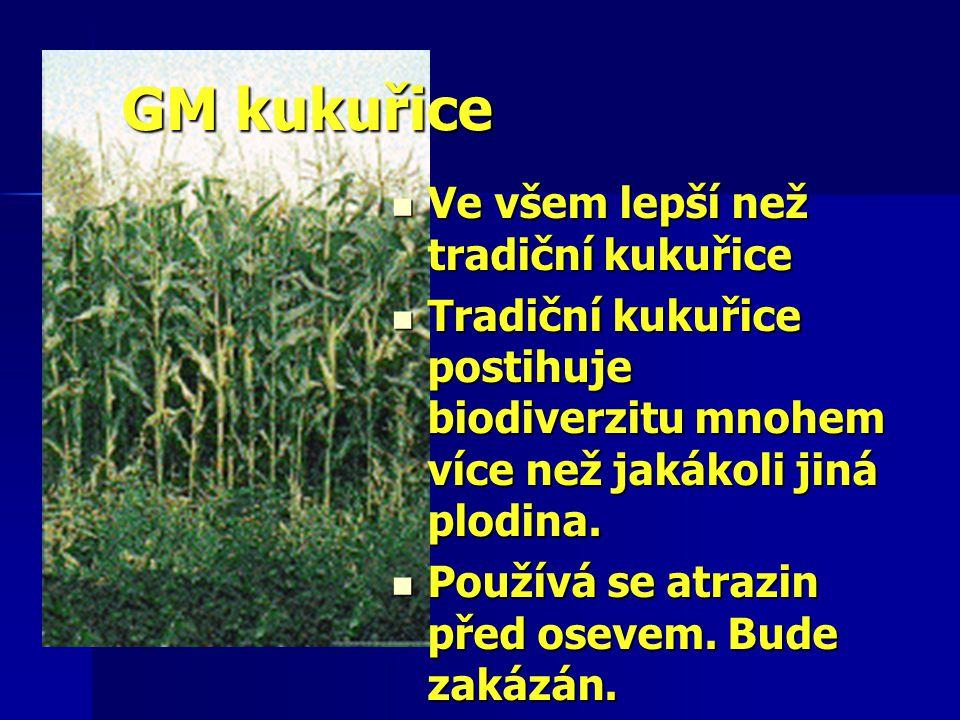 GM kukuřice Ve všem lepší než tradiční kukuřice Ve všem lepší než tradiční kukuřice Tradiční kukuřice postihuje biodiverzitu mnohem více než jakákoli