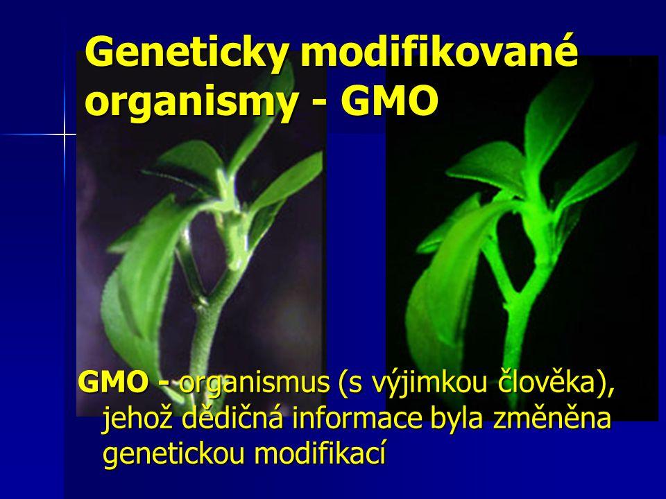 GMO - organismus (s výjimkou člověka), jehož dědičná informace byla změněna genetickou modifikací Geneticky modifikované organismy - GMO