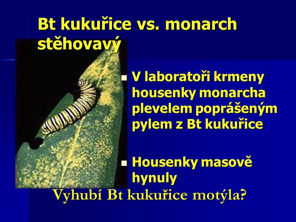 Bt kukuřice vs. monarch stěhovavý V laboratoři krmeny housenky monarcha plevelem poprášeným pylem z Bt kukuřice V laboratoři krmeny housenky monarcha