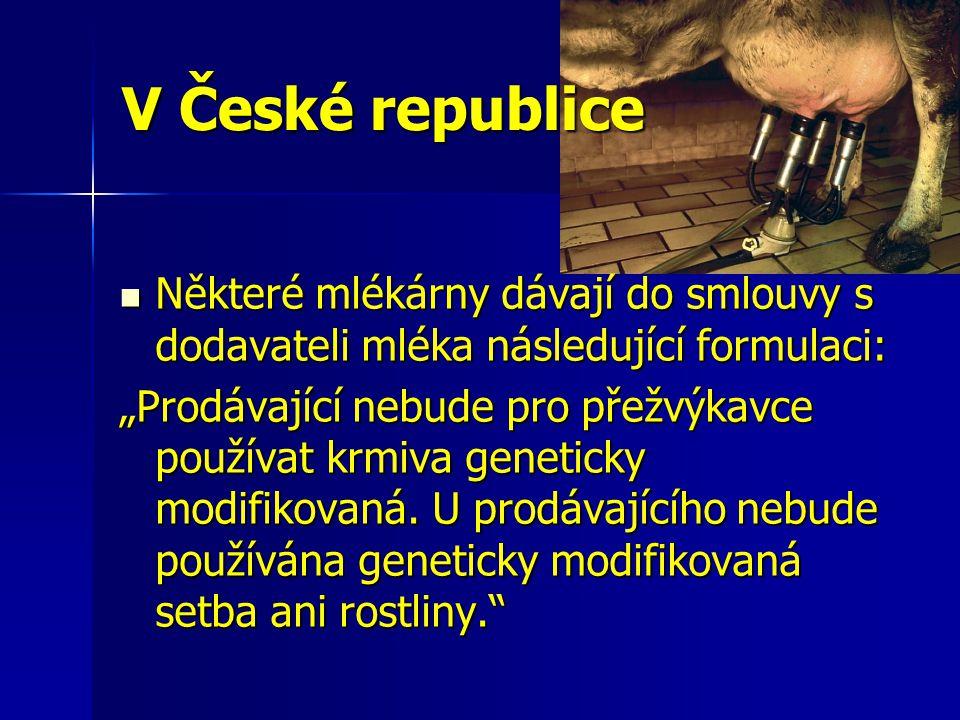 """V České republice Některé mlékárny dávají do smlouvy s dodavateli mléka následující formulaci: Některé mlékárny dávají do smlouvy s dodavateli mléka následující formulaci: """"Prodávající nebude pro přežvýkavce používat krmiva geneticky modifikovaná."""