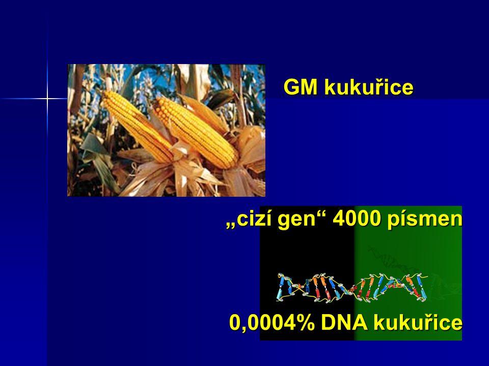 """""""cizí gen"""" 4000 písmen 0,0004% DNA kukuřice GM kukuřice"""