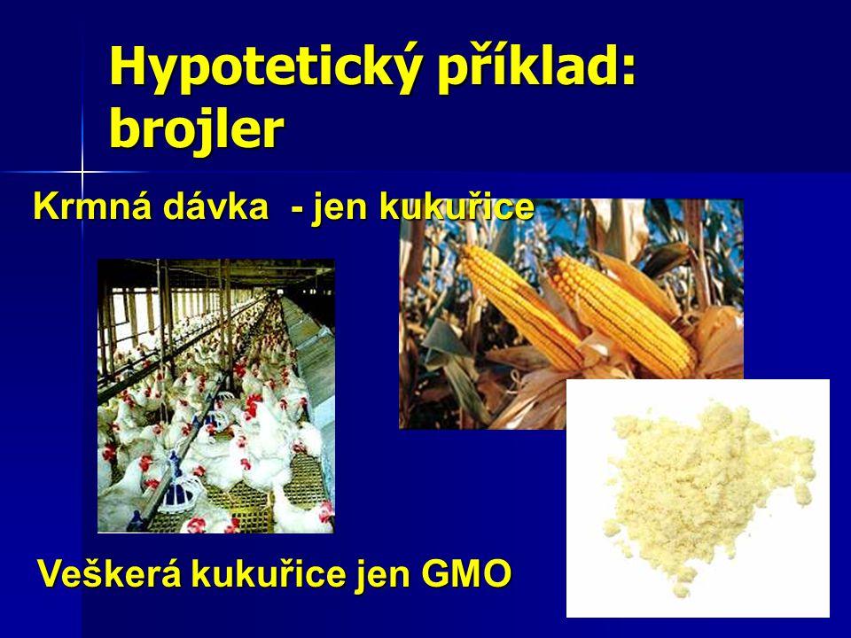 Krmná dávka - jen kukuřice Veškerá kukuřice jen GMO Hypotetický příklad: brojler