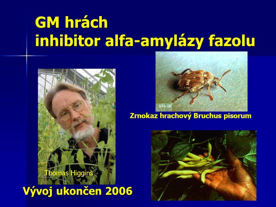 GM hrách inhibitor alfa-amylázy fazolu Thomas Higgins Zrnokaz hrachový Bruchus pisorum Vývoj ukončen 2006