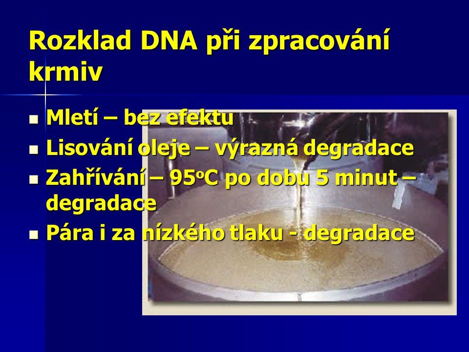 Rozklad DNA při zpracování krmiv Mletí – bez efektu Mletí – bez efektu Lisování oleje – výrazná degradace Lisování oleje – výrazná degradace Zahřívání