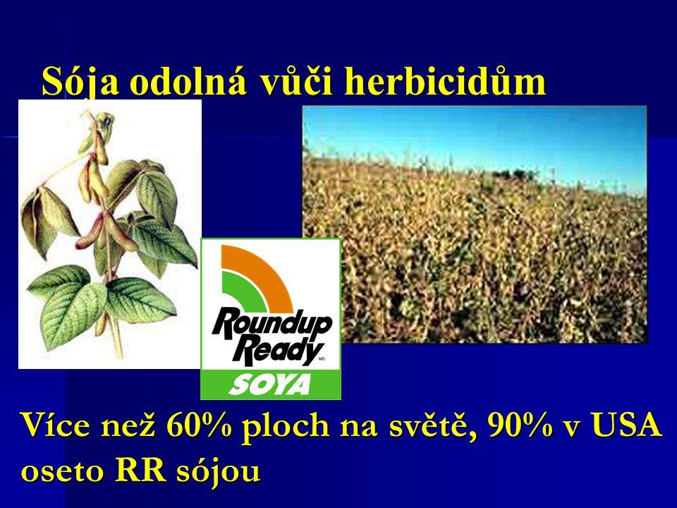 Sója odolná vůči herbicidům Více než 60% ploch na světě, 90% v USA oseto RR sójou