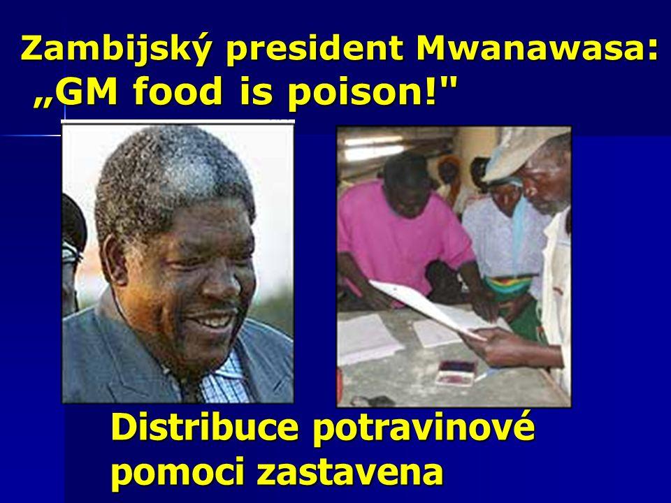 """Zambijský president Mwanawasa : """"GM food is poison! """"GM food is poison! Distribuce potravinové pomoci zastavena"""