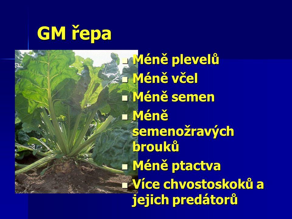 GM řepa Méně plevelů Méně plevelů Méně včel Méně včel Méně semen Méně semen Méně semenožravých brouků Méně semenožravých brouků Méně ptactva Méně ptactva Více chvostoskoků a jejich predátorů Více chvostoskoků a jejich predátorů