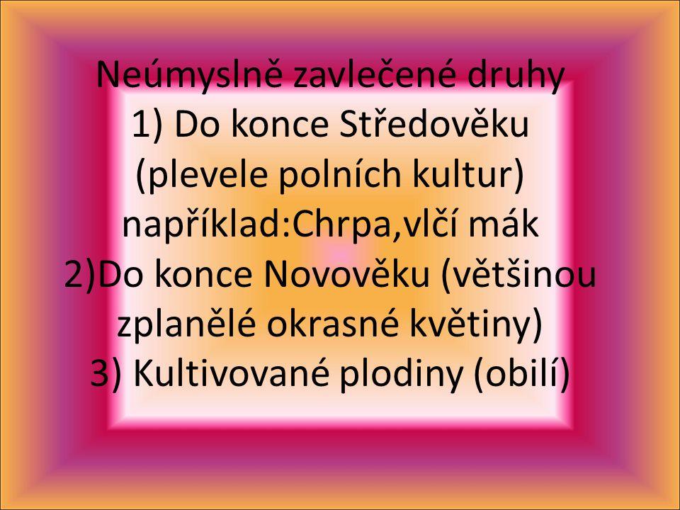 Neúmyslně zavlečené druhy 1) Do konce Středověku (plevele polních kultur) například:Chrpa,vlčí mák 2)Do konce Novověku (většinou zplanělé okrasné květiny) 3) Kultivované plodiny (obilí)