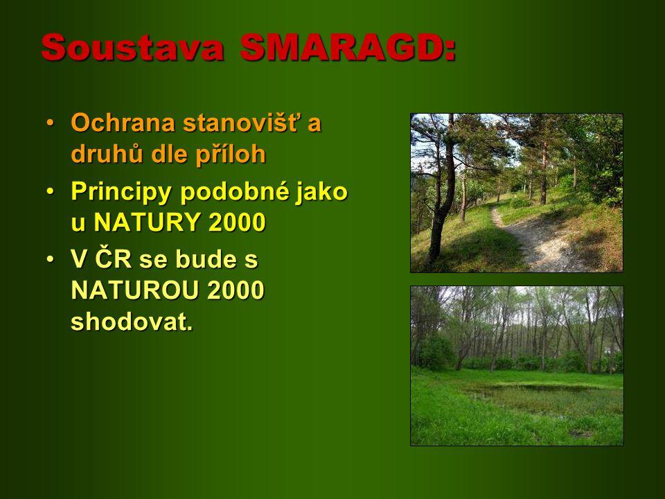 Soustava SMARAGD: Ochrana stanovišť a druhů dle přílohOchrana stanovišť a druhů dle příloh Principy podobné jako u NATURY 2000Principy podobné jako u