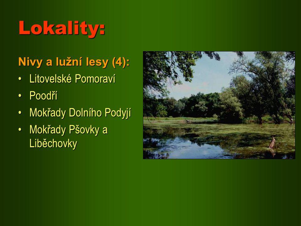 Lokality: Nivy a lužní lesy (4): Litovelské PomoravíLitovelské Pomoraví PoodříPoodří Mokřady Dolního PodyjíMokřady Dolního Podyjí Mokřady Pšovky a Lib