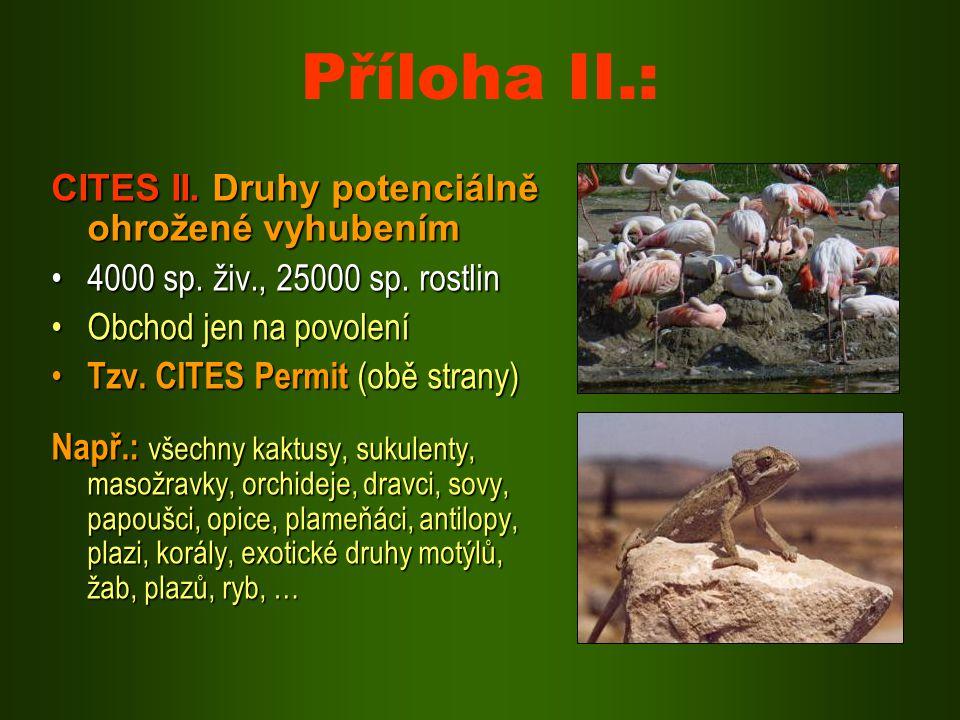 Příloha II.: CITES II. Druhy potenciálně ohrožené vyhubením 4000 sp. živ., 25000 sp. rostlin4000 sp. živ., 25000 sp. rostlin Obchod jen na povoleníObc