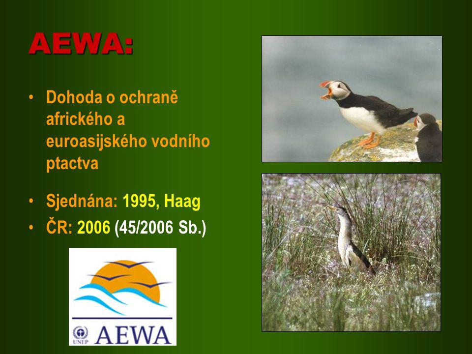 AEWA: Dohoda o ochraně afrického a euroasijského vodního ptactva Sjednána: 1995, Haag ČR: 2006 (45/2006 Sb.)