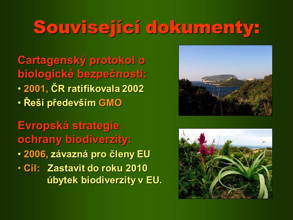 Související dokumenty: Cartagenský protokol o biologické bezpečnosti: 2001, ČR ratifikovala 2002 2001, ČR ratifikovala 2002 Řeší především GMO Řeší př