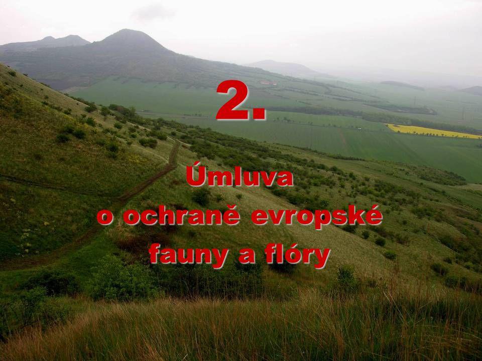 2. Úmluva o ochraně evropské fauny a flóry