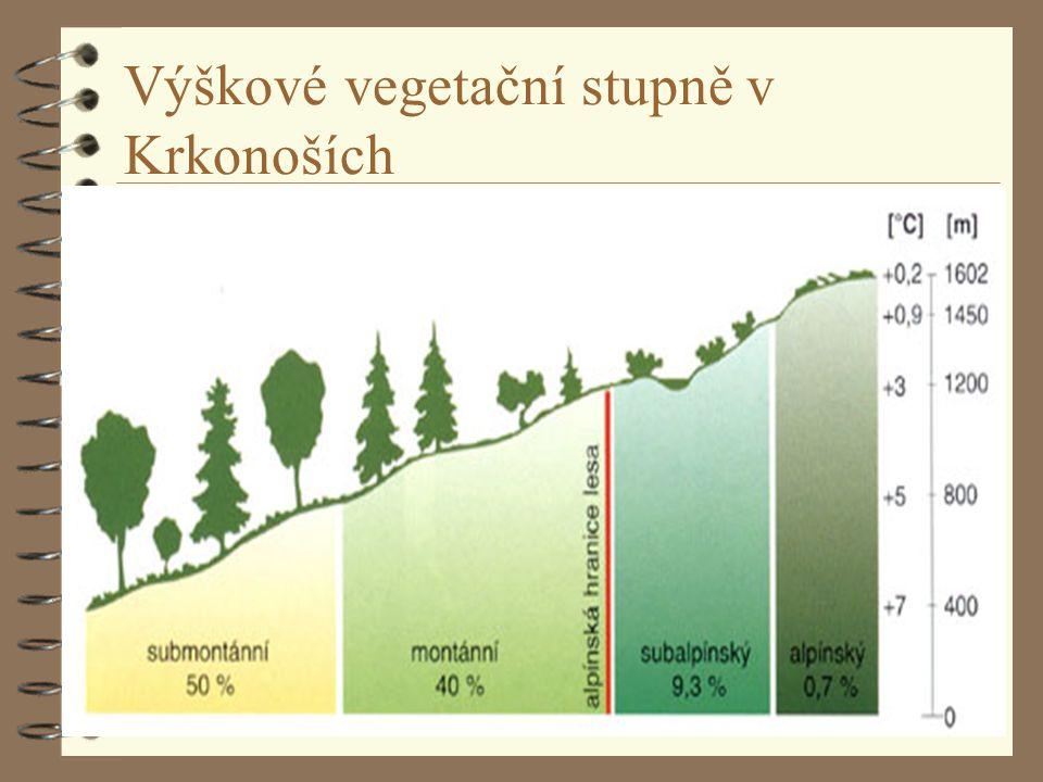 Výškové vegetační stupně v Krkonoších