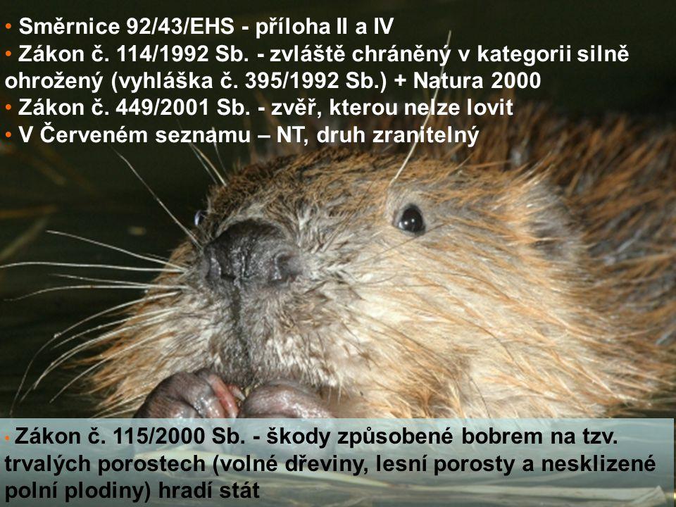 Směrnice 92/43/EHS - příloha II a IV Zákon č. 114/1992 Sb. - zvláště chráněný v kategorii silně ohrožený (vyhláška č. 395/1992 Sb.) + Natura 2000 Záko