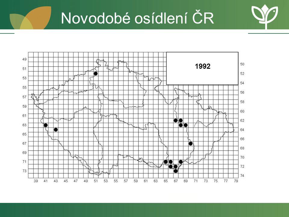 1992 Novodobé osídlení ČR