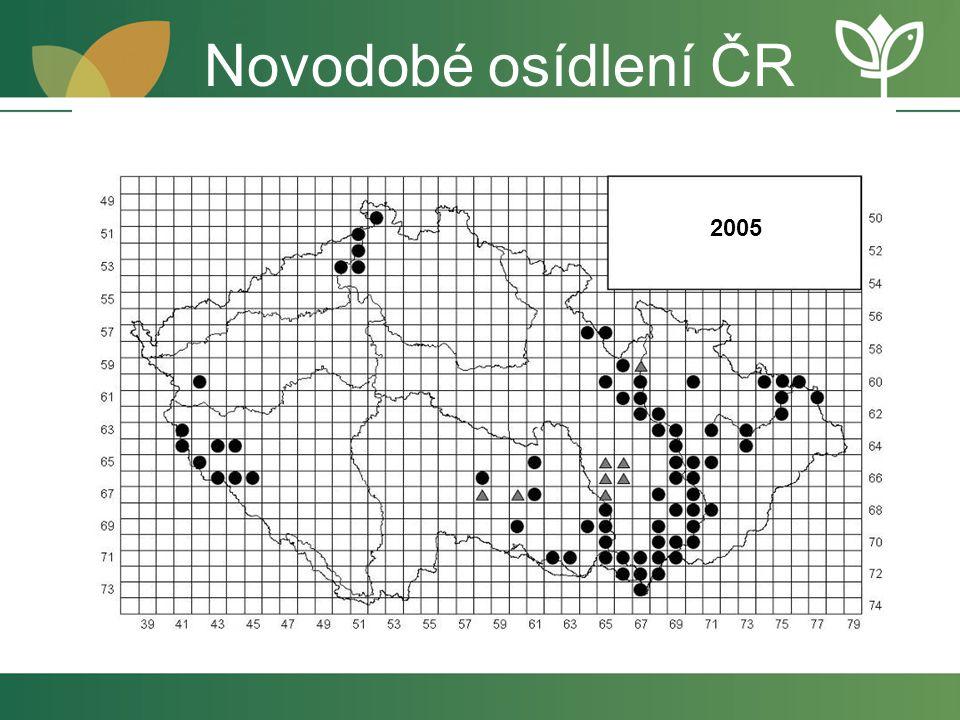 2005 Novodobé osídlení ČR