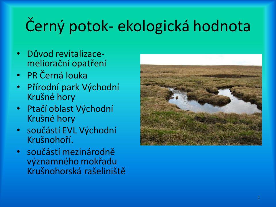 Černý potok- ekologická hodnota Důvod revitalizace- meliorační opatření PR Černá louka Přírodní park Východní Krušné hory Ptačí oblast Východní Krušné