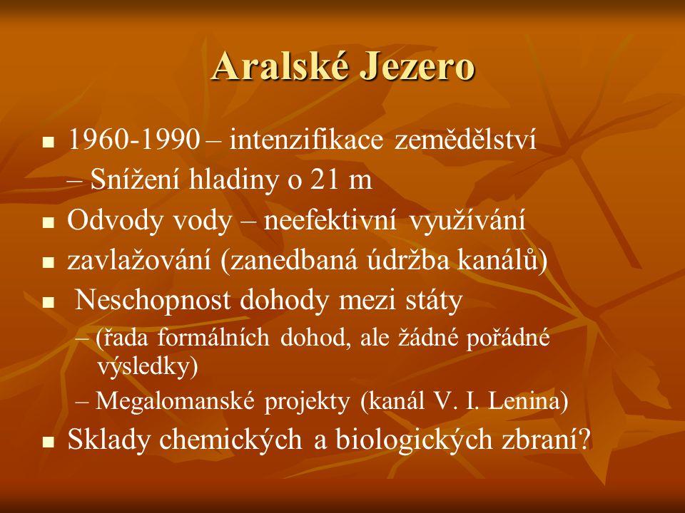 Aralské Jezero 1960-1990 – intenzifikace zemědělství – Snížení hladiny o 21 m Odvody vody – neefektivní využívání zavlažování (zanedbaná údržba kanálů) Neschopnost dohody mezi státy – (řada formálních dohod, ale žádné pořádné výsledky) – Megalomanské projekty (kanál V.