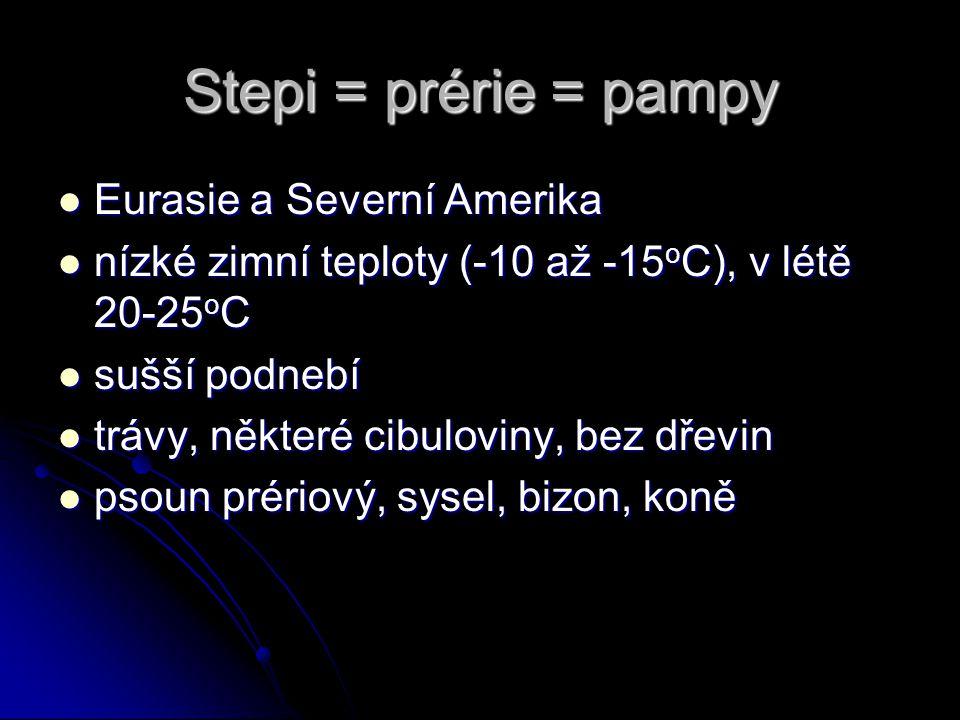 Stepi = prérie = pampy Eurasie a Severní Amerika Eurasie a Severní Amerika nízké zimní teploty (-10 až -15 o C), v létě 20-25 o C nízké zimní teploty
