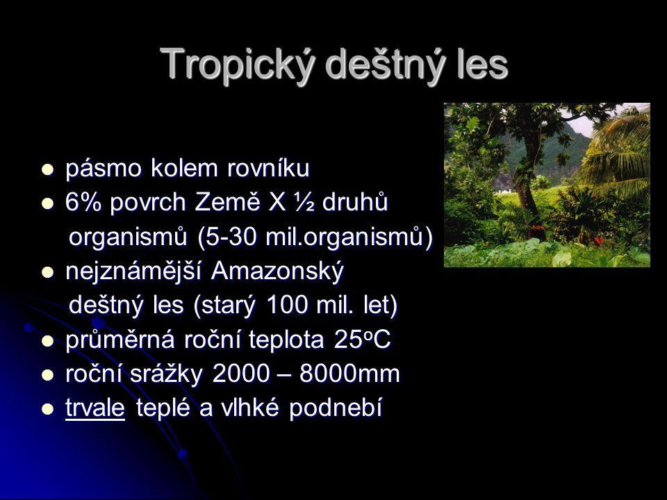 Tropický deštný les pásmo kolem rovníku pásmo kolem rovníku 6% povrch Země X ½ druhů 6% povrch Země X ½ druhů organismů (5-30 mil.organismů) organismů