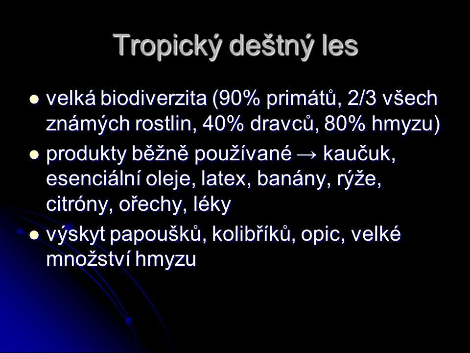 Tropický deštný les velká biodiverzita (90% primátů, 2/3 všech známých rostlin, 40% dravců, 80% hmyzu) velká biodiverzita (90% primátů, 2/3 všech znám