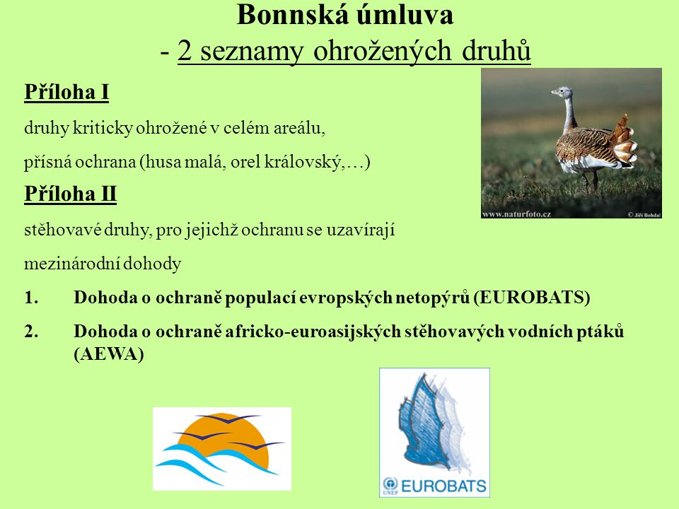 Bonnská úmluva - 2 seznamy ohrožených druhů Příloha I druhy kriticky ohrožené v celém areálu, přísná ochrana (husa malá, orel královský,…) Příloha II stěhovavé druhy, pro jejichž ochranu se uzavírají mezinárodní dohody 1.Dohoda o ochraně populací evropských netopýrů (EUROBATS) 2.