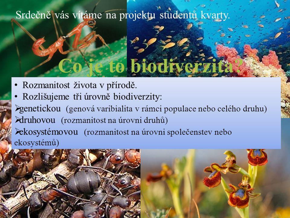 Co je to biodiverzita? Srdečně vás vítáme na projektu studentů kvarty. Rozmanitost života v přírodě. Rozlišujeme tři úrovně biodiverzity:  genetickou
