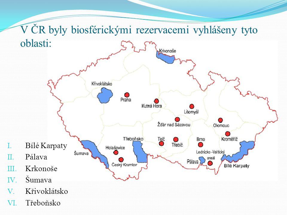 V ČR byly biosférickými rezervacemi vyhlášeny tyto oblasti: I. Bílé Karpaty II. Pálava III. Krkonoše IV. Šumava V. Křivoklátsko VI. Třeboňsko