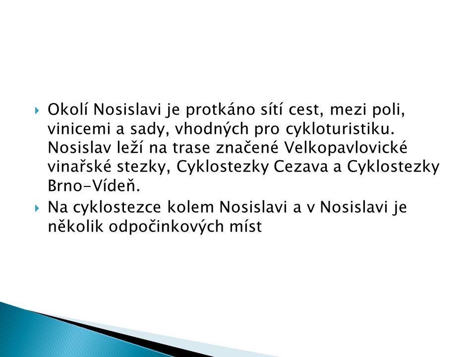  Okolí Nosislavi je protkáno sítí cest, mezi poli, vinicemi a sady, vhodných pro cykloturistiku. Nosislav leží na trase značené Velkopavlovické vinař