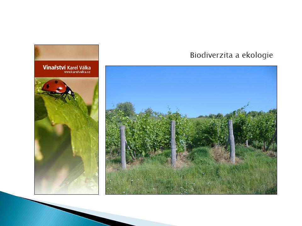 Biodiverzita a ekologie